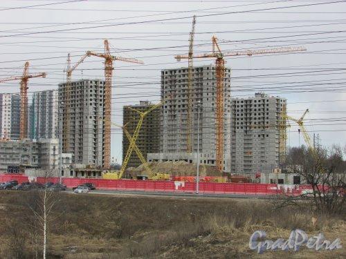 Строительство жилых домов №21- №23 жилого комплекса «Новая Охта». Фото 21 марта 2016 года.