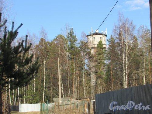 Лен. область, Ломоносовский район, деревня Гора Валдай. Водонапорная башня. Фото 9 апреля 2016 года.