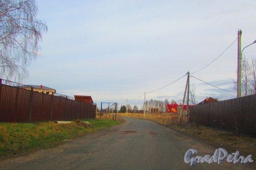 Лен область, Всеволожский район, Свердловское ГП. Вид на территорию деревни Оранжерейка со стороны коттеджного посёлка «Оранжерейка». Фото 24 апреля 2016 года.