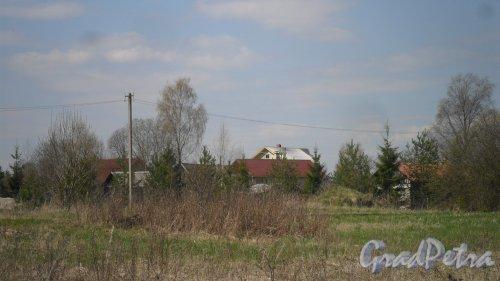 Волосовский район, деревня Арбонье. Панорама населенного пункта со стороны леса в сторону Кикерино. Фото 2 мая 2016 года.