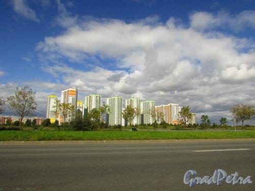 Южное шоссе, дом 55. Корпуса жилого комплекса «София». Вид со стороны улицы Димитрова. Фото 8 сентября 2016 года.