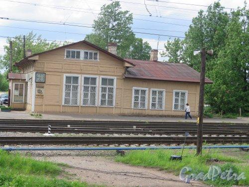 Сиверская, ж/д ст. Старый вокзал. фото июнь 2015 г.
