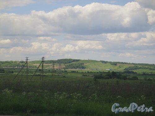 Пос. Можайский. Вид на Дудергофские высоты с Киевского шоссе. фото июнь 2015 г.