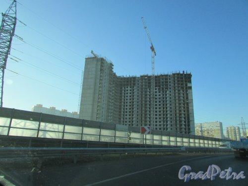 Строительство UP «Московский» (территория, ограниченная Московским шоссе, Школьной ул., перспективными проездами в пос. Шушары). Фото 2 ноября 2017 года.