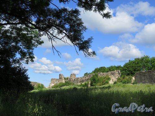Копорская крепость, 13-18 вв. Общий вид. фото июль 2015 г.