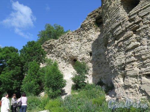 Копорская крепость, 13-18 вв. Стена в современном состоянии. фото июль 2015 г.