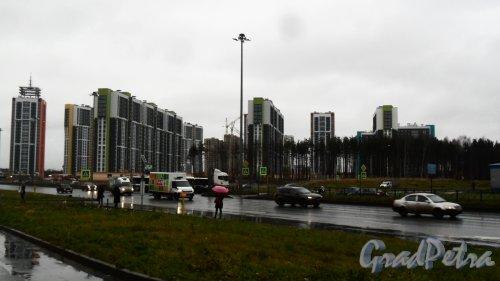 ЖК «Шуваловский». Общий вид жилого комплекса с пересечения Шуваловского проспекта и Парашютной улицы. Фото 16 ноября 2017 года.