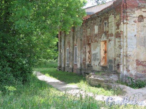 Копорская крепость, Собор Преображения Господня. Северный фасад. фото июль 2015 г.