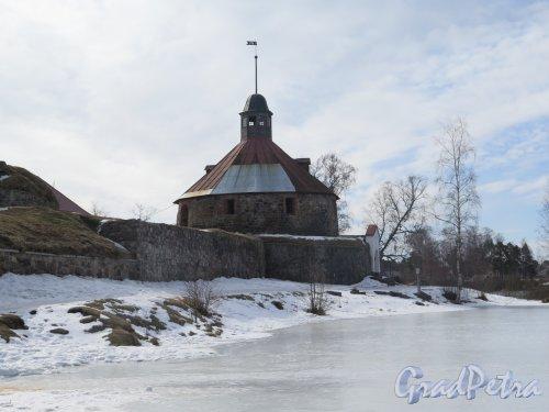 Крепость Корела. Северо-западная куртина и воротная башня, кон. 16 в. фото март 2016 г.