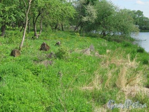 Противотанковые надолбы на берегу реки Ижора в районе г. Коммунар. фото май 2016 г.