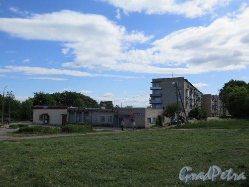 Деревня Оржицы, д. 12а. Универсам «Дикси» и Отделение почтовой связи. Общий вид. фото июнь 2016 г.