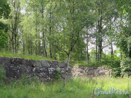г. Выборг. Восточно-Выборгские укрепления. Батарейная гора. Фрагмент укрепления склона. фото июнь 2016 г.