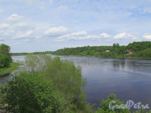 Вид реки Волхов из Крепости «Старая Ладога». фото июнь 2017 г.