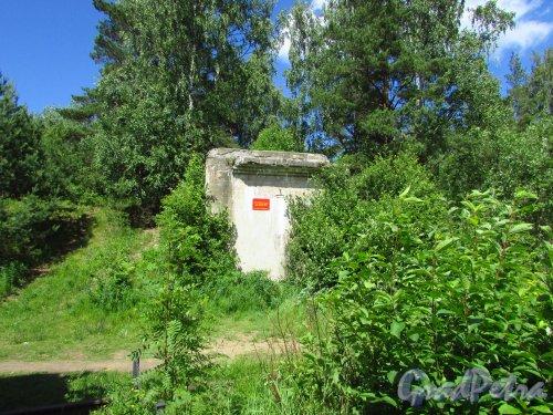 Форт «Красная Горка». Артиллерийская батарея № 3 (10-ДМ (245 мм)). Фото 20 июня 2016 года.