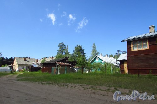 Частные дома у ж/д станции «Краснофлотск». Фото - июня 2016 года.