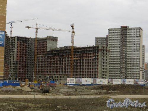 Лен. обл., Всеволожский р-н, г. Мурино. Строительство корпусов  ЖК «Мой город». Фото 22 апреля 2015 г.