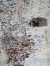 г. Выборг, Замковый остров. Выборгский замок. Фрагмент стены. Фото июнь 2013 г