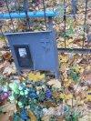 Г. Ломоносов, Мартышкинское кладбище. Захоронение И.И. Григорьева. Фото 16 октября 2014 г.