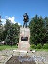 Памятник В.И. Ленину в Луге (Центральный сквер). Общий вид. Фото июнь 2014 г.