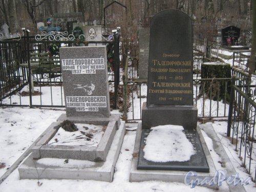 Богословское кладбище. Захоронение Талепоровских. Фото февраль 2014 г.