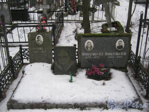 Богословское кладбище. Захоронение Пименовой-Помилуйко. Фото февраль 2014 г.