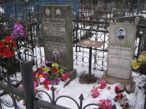 Богословское кладбище. Захоронение Наважай-Леушиных. Фото февраль 2014 г.