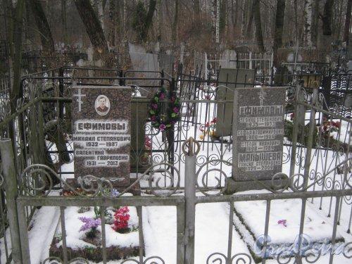Богословское кладбище. Захоронение Ефимовой-Малышевых. Фото февраль 2014 г.