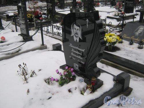 Богословское кладбище. Захоронение Д.В. Полковникова (1963-2008). Фото февраль 2014 г.