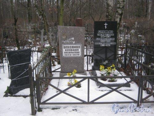 Богословское кладбище. Захоронение семьи Блудимко. Фото февраль 2014 г.