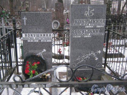 Богословское кладбище. Захоронение семьи Кокушкиных. Фото февраль 2014 г.