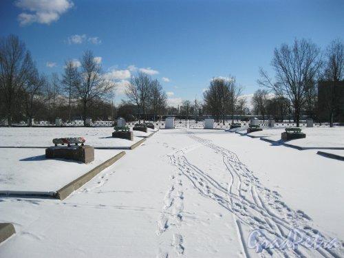 Кладбище (воинское захоронение) Дачное. Центральная аллея. Фото 17 марта 2014 г.
