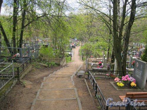 г. Пушкин, Кузьминское кладбище. Тропинка (спуск) в сторону р. Кузьминки. Фото 5 мая 2014 г.