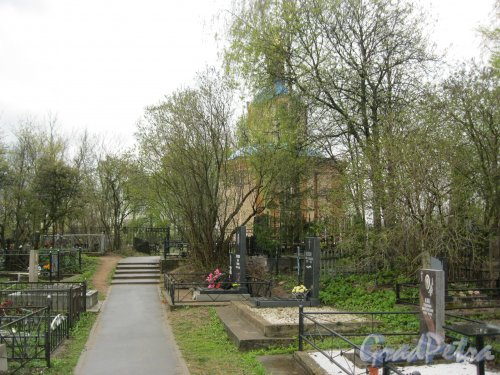 г. Пушкин, Кузьминское кладбище. Тропинка в сторону часовни. Фото 5 мая 2014 г.