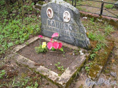 г. Пушкин, Кузьминское кладбище. Могила А.П. и Д.А Капинос. Фото 5 мая 2014 г.