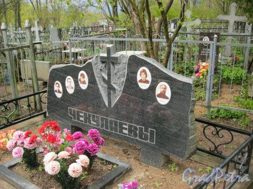 г. Пушкин, Кузьминское кладбище. Семейное захоронение Ефимова-Чекулаевых Фото 5 мая 2014 г.