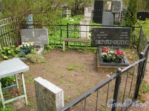 г. Пушкин, Кузьминское кладбище. Захоронение Болотовых-Егоровых. Фото 5 мая 2014 г.