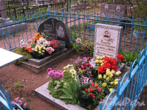 г. Пушкин, Кузьминское кладбище. Захоронение Волковых. Фото 5 мая 2014 г.
