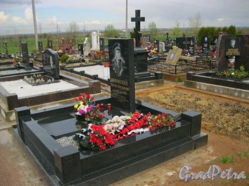 г. Пушкин, Кузьминское кладбище. Могила Л.М. Лозовского. Фото 5 мая 2014 г.