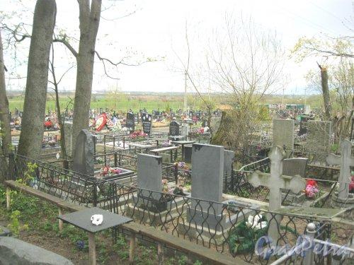 г. Пушкин, Кузьминское кладбище. Фрагмент. Фото 5 мая 2014 г.