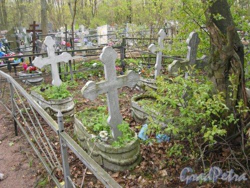 г. Пушкин, Кузьминское кладбище. Одно из старых захоронений. Фото 5 мая 2014 г.