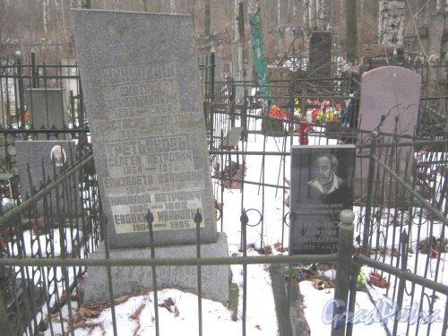 Богословское кладбище. Могилы Третьяковых. Фото февраль 2014 г.