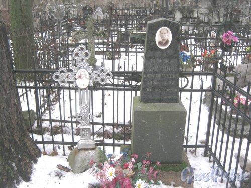 Богословское кладбище. Могила Профессора К.А. Хлусцова (1903-1956). Фото февраль 2014 г.