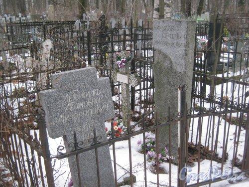 Богословское кладбище. Могилы Милорадовичей. Фото февраль 2014 г.