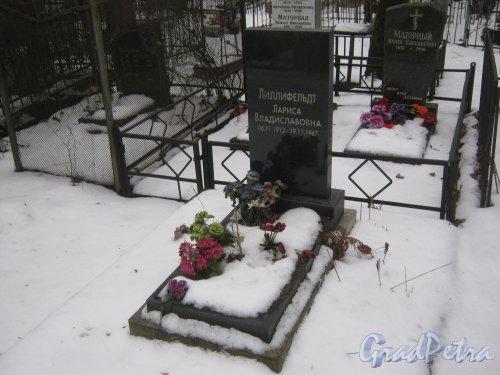 Захоронение Л.В. Лиллифедт на Богословском владбище. Фото февраль 2014 г.