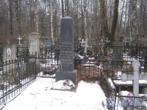 Захоронение семьи Чиркинянц на Богославском кладбище. Фото февраль 2014 г.