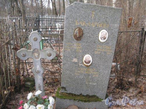 г. Ломоносов, Мартышкинское кладбище. Захоронение Баклагиных. Фото 7 марта 2014 г.