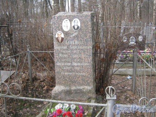 г. Ломоносов, Мартышкинское кладбище. Могила Аликиных. Фото 7 марта 2014 г.