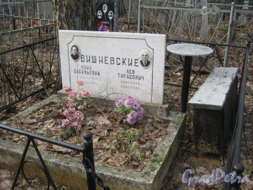 г. Ломоносов, Мартышкинское кладбище. Захоронение Вишневских. Фото 7 марта 2014 г.