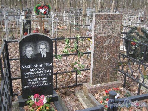 г. Ломоносов, Мартышкинское кладбище. Захоронение Александровых. Фото 7 марта 2014 г.