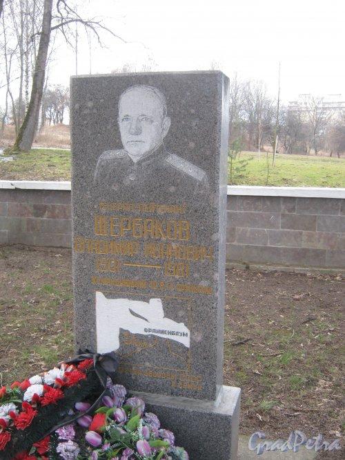 Захоронение В.И. Щербакова на Мартышкинском братском захоронение в городе Ломоносов. Фото 7 марта 2014 г.